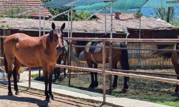 Equestrian center Zdravec – Skravena